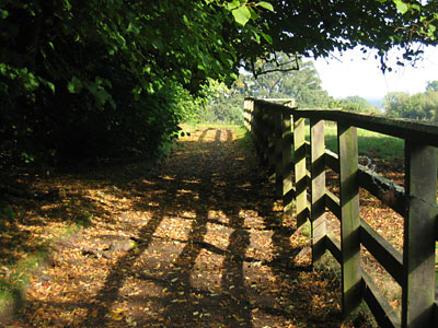 Path at Cawdor Castle